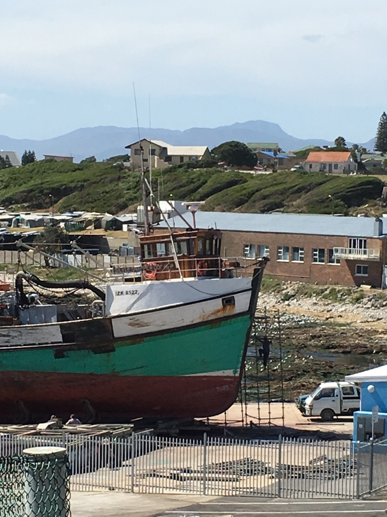 www.roaming-fox.com Gansbaai harbour 5.JPG