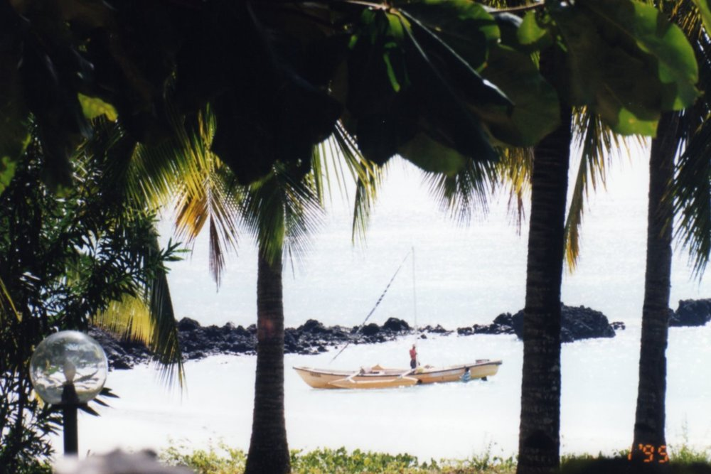 Pirogue through the palm trees