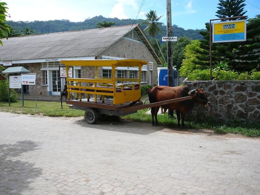 La Digue Ox Cart