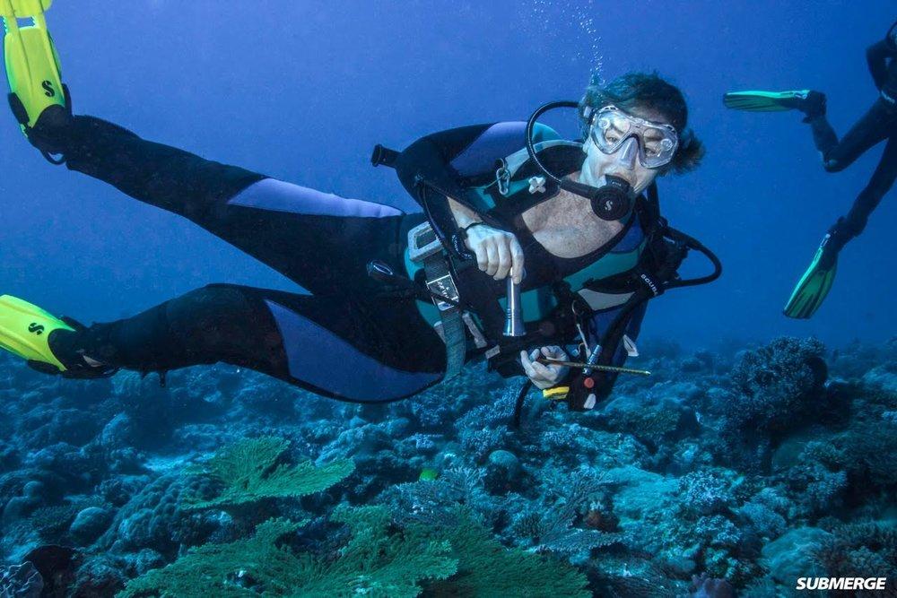 Diving in Madagascar - Sabrina Hindley