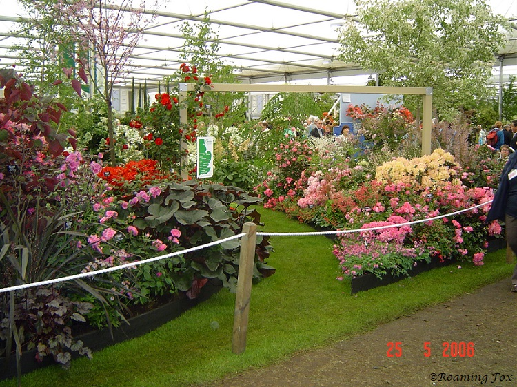 Flower Display Chelsea Flower Show 2006.JPG