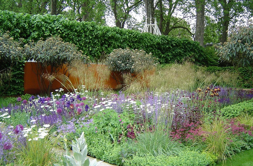 Beautiful combination of plants and flowers -