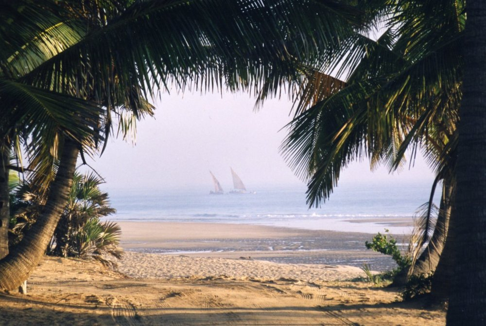 Dhows preparing for fishing with nets