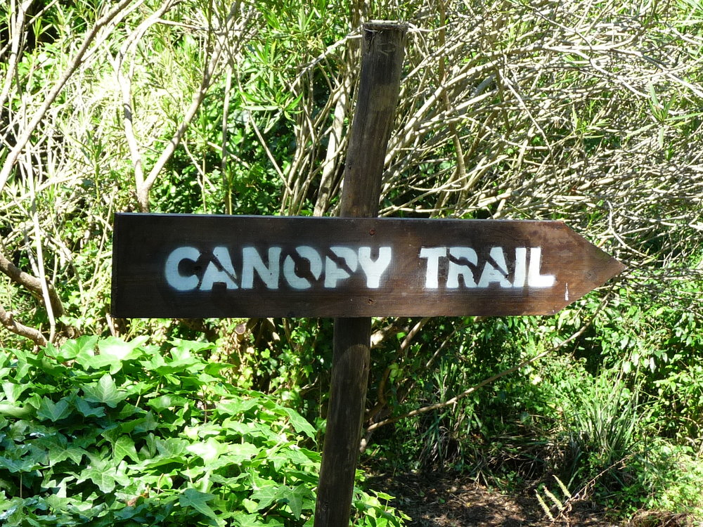 Canopy Trail sign Magoebaskloof zipline.JPG