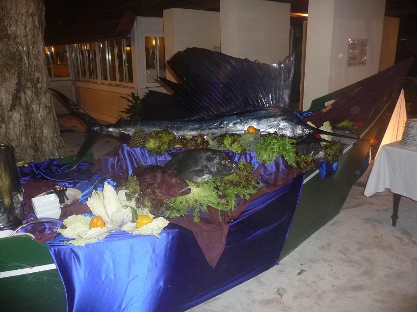 Marlin display Club Med Kani.JPG