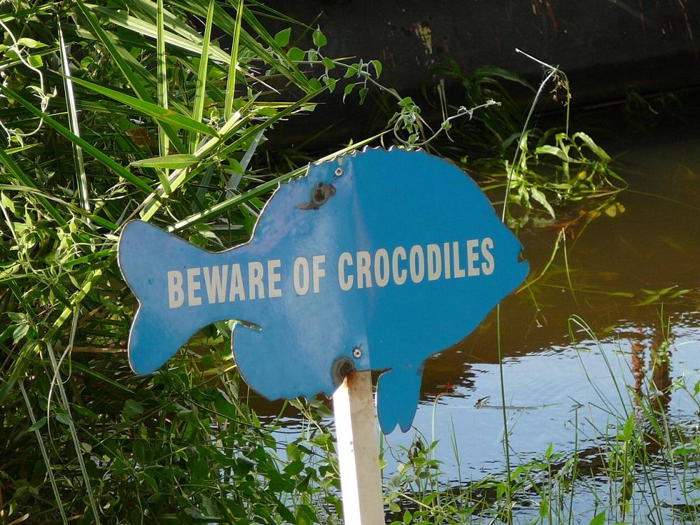 Beware of crocodile sign at aZambezi River Lodge.JPG