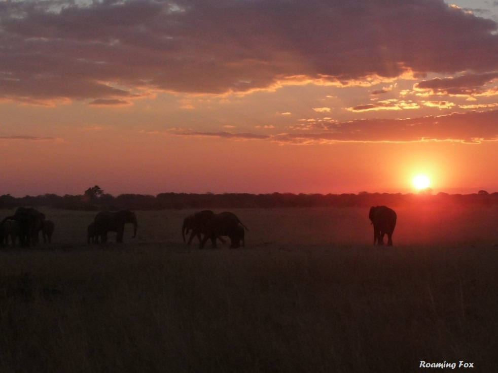 Dust particles add to the sunset extravaganza in Africa
