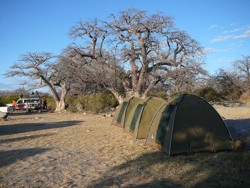 Camping under baobabs Kubu island.JPG