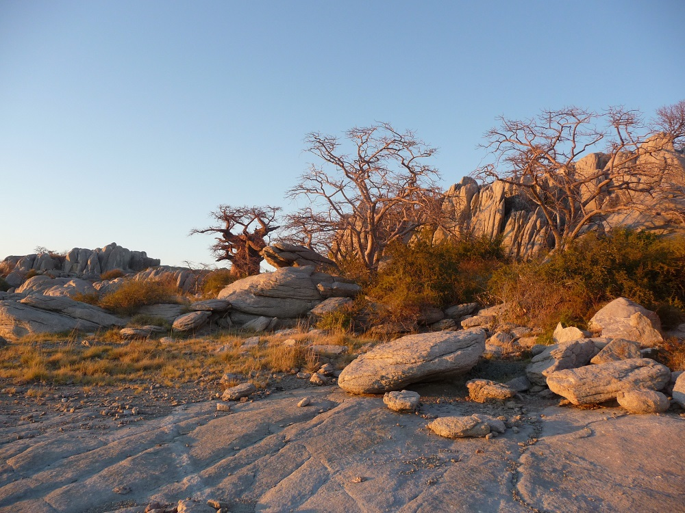 www.roaming-fox.com Sun on granite rocks Mkgadikgadi.JPG