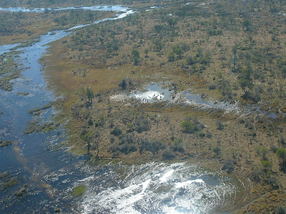 Okavango waterways www.roaming-fox.com.JPG