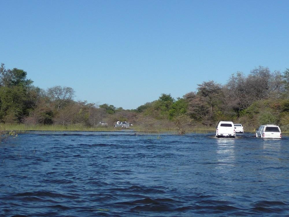 Vehicles driving through water Okavango delta www.roaming-fox.com.JPG