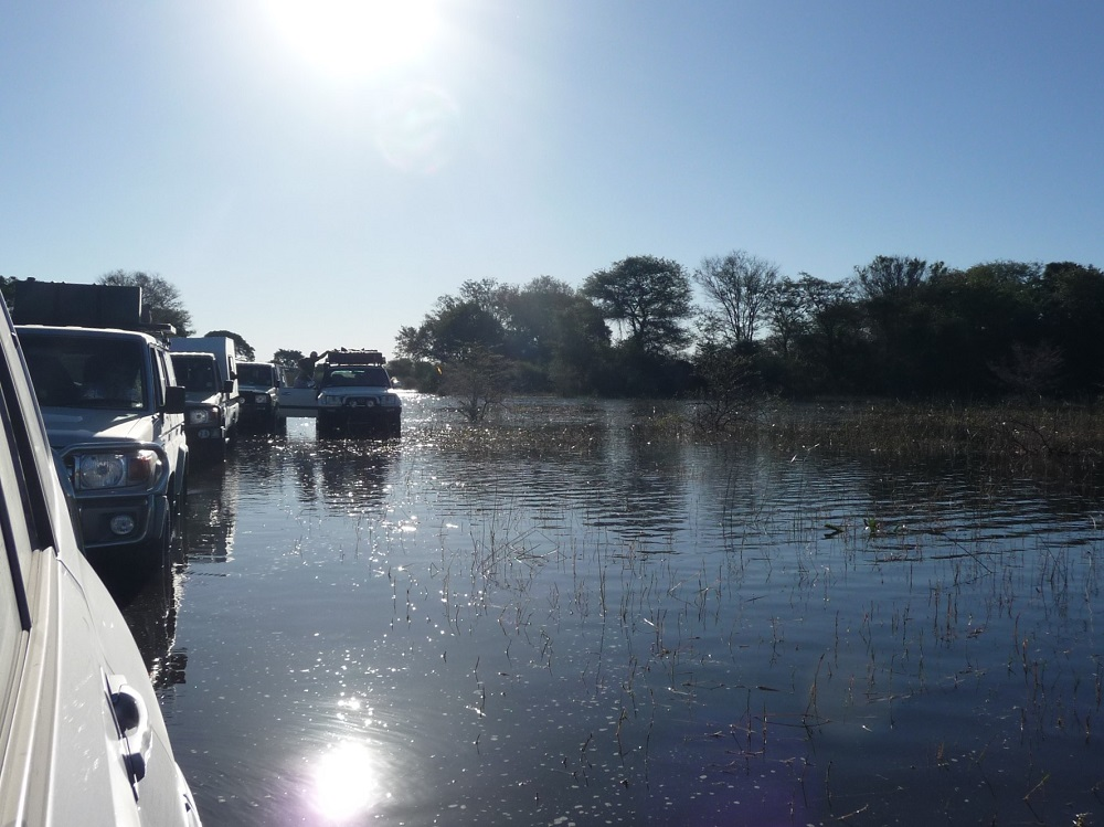 www.roaming-fox.com Vehicles standing in water Okavango.JPG