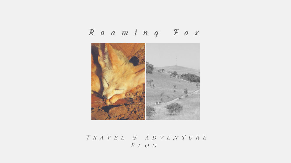 Roaming Fox & off-road trail Mozambique