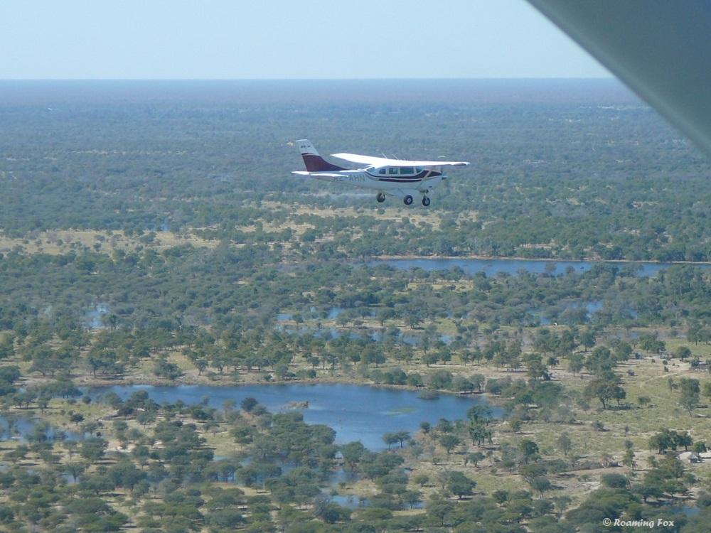 One of the planes that flew us over the Okavango
