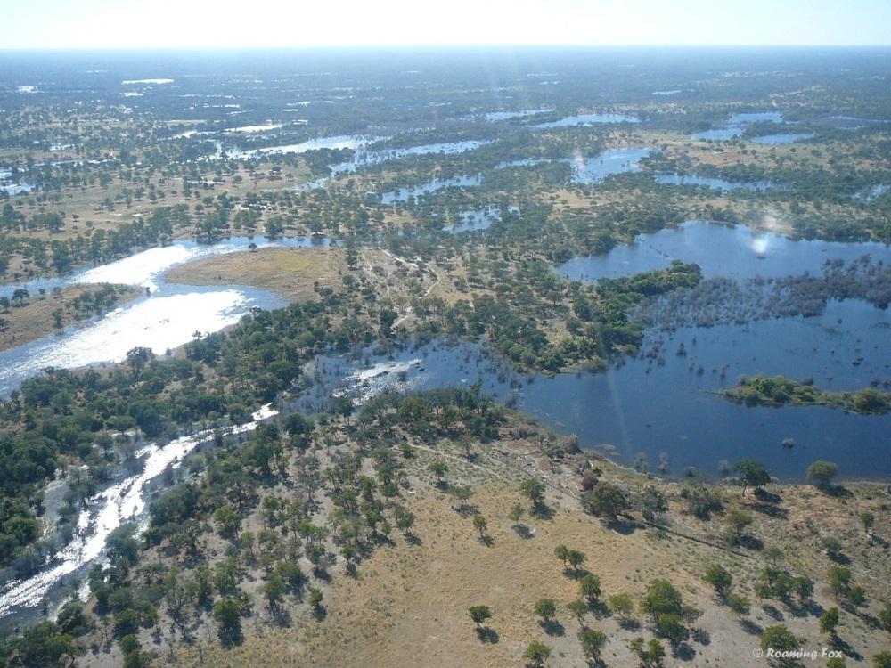 Okavango with plenty of water