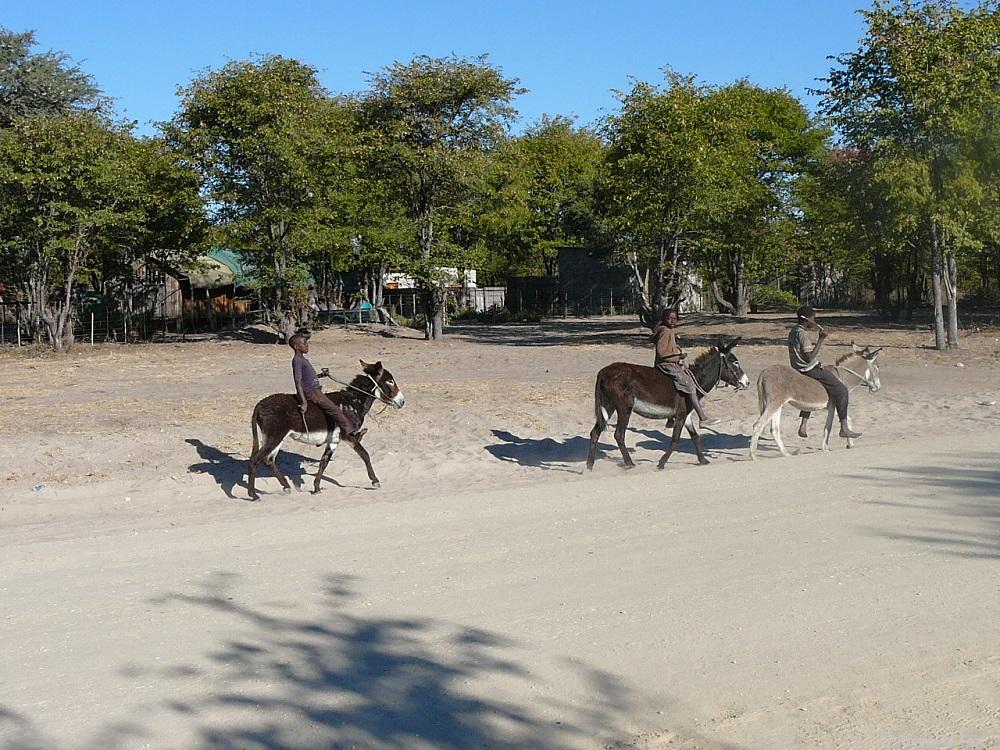 Driving towards Moremi, children on donkeys in Botswana