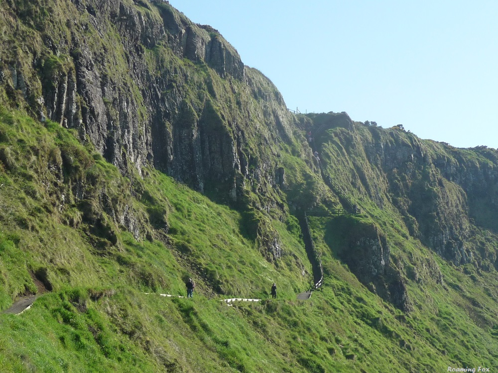 Giant's Causeway Red Trail Path and steps.JPG