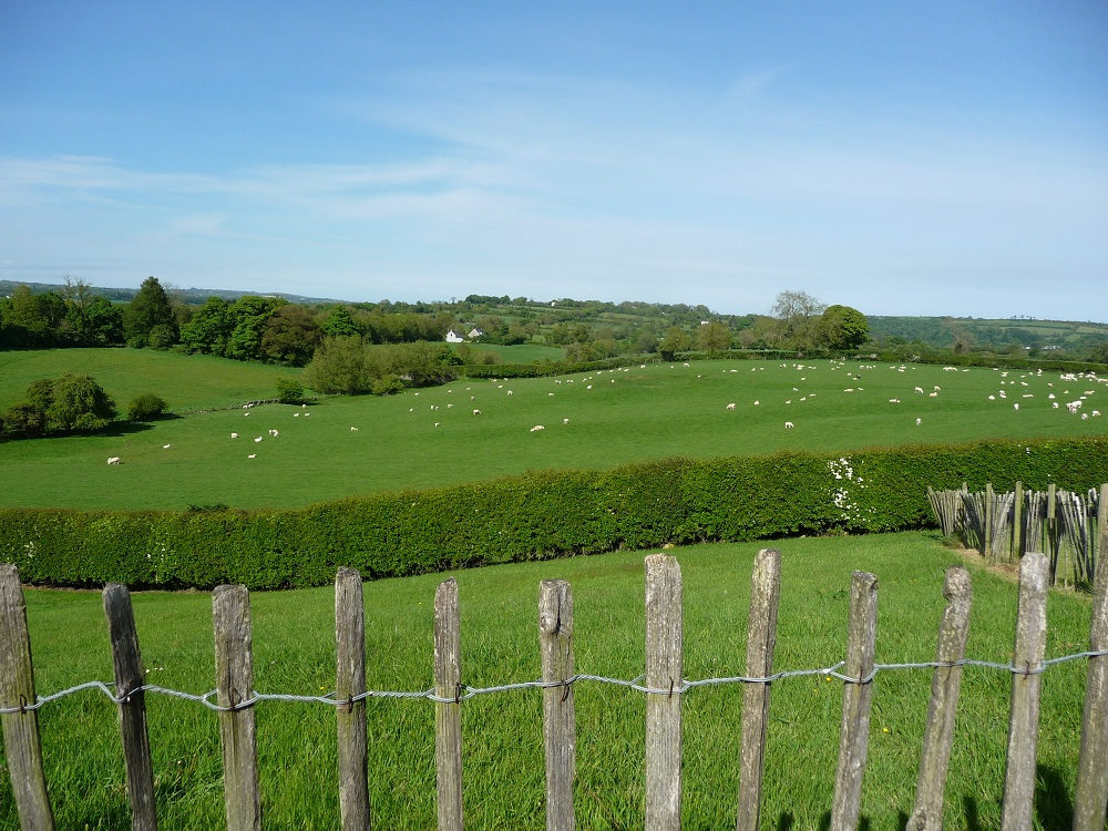 Beautiful countryside at Boyne Valley Newgrange