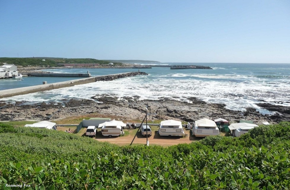 Coastal shrub and fynbos, the caravan park and view of the old and new harbour