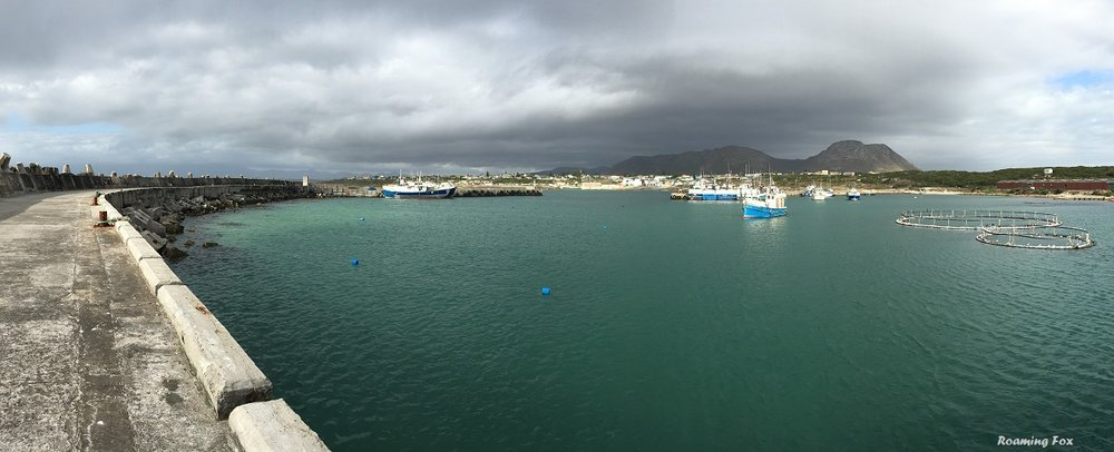 Panoramic view Gansbaai over new harbour