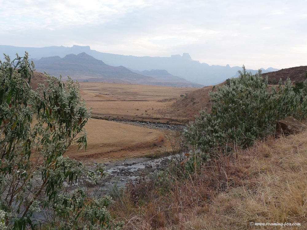 Drakensberg Amphitheatre - a phenomenal geographical feature