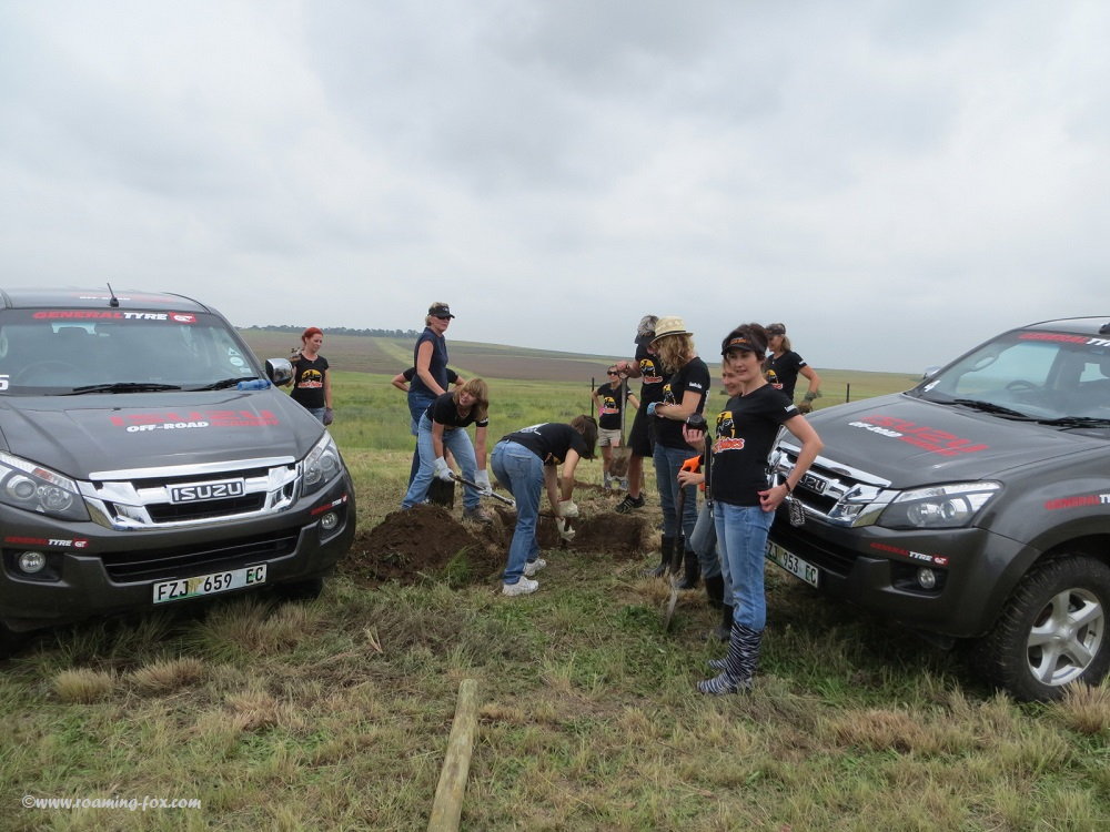 Isuzu & Bush Babes delivering