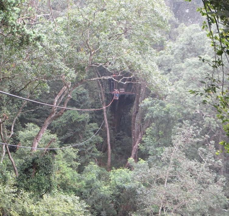 Ziplining from the platform - an eco-adventure