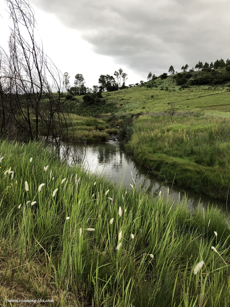 Scenic area near Cathkin Park, Central Drakensberg