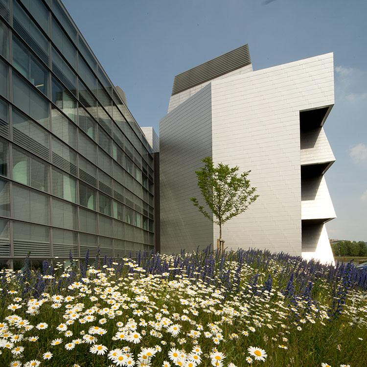 <b>Laboratory of Molecular Biology</b> | Medical Research Council