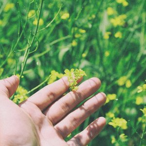 hand and flower.jpg