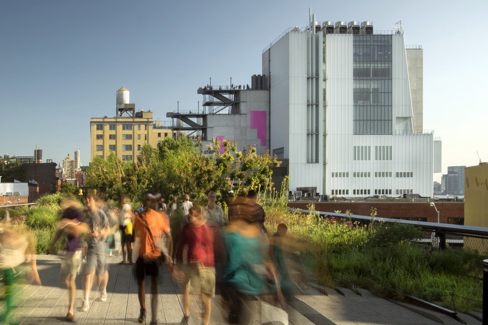 Figure 2:View from the High Line, 2015(Courtesy Renzo Piano Building Workshop. Photo by Nic Lehoux)