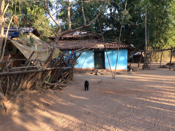 Solar home systems used to supply household electricity in a rural Indian village  (Elise Harrington, January 2018)