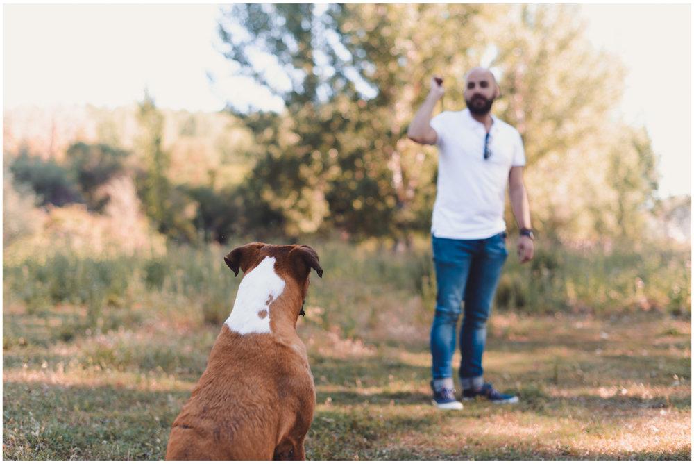 Nala-Retrato-Mascotas-Perros_Jose-Angel-Fotografia-153.jpg