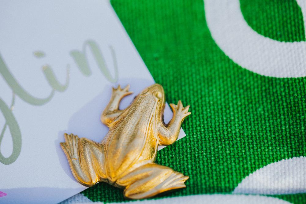 frogs & fairy tales -