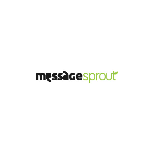 Message Sprout - Karina Antenucci  Complimentary 1-hour Website Content/Copy Phone Consultation #copywriting #contentmarketing   messagesproutinc.com