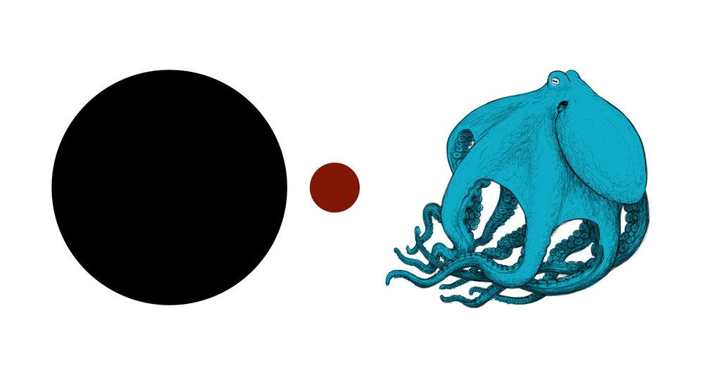 Octopus Mural.jpg