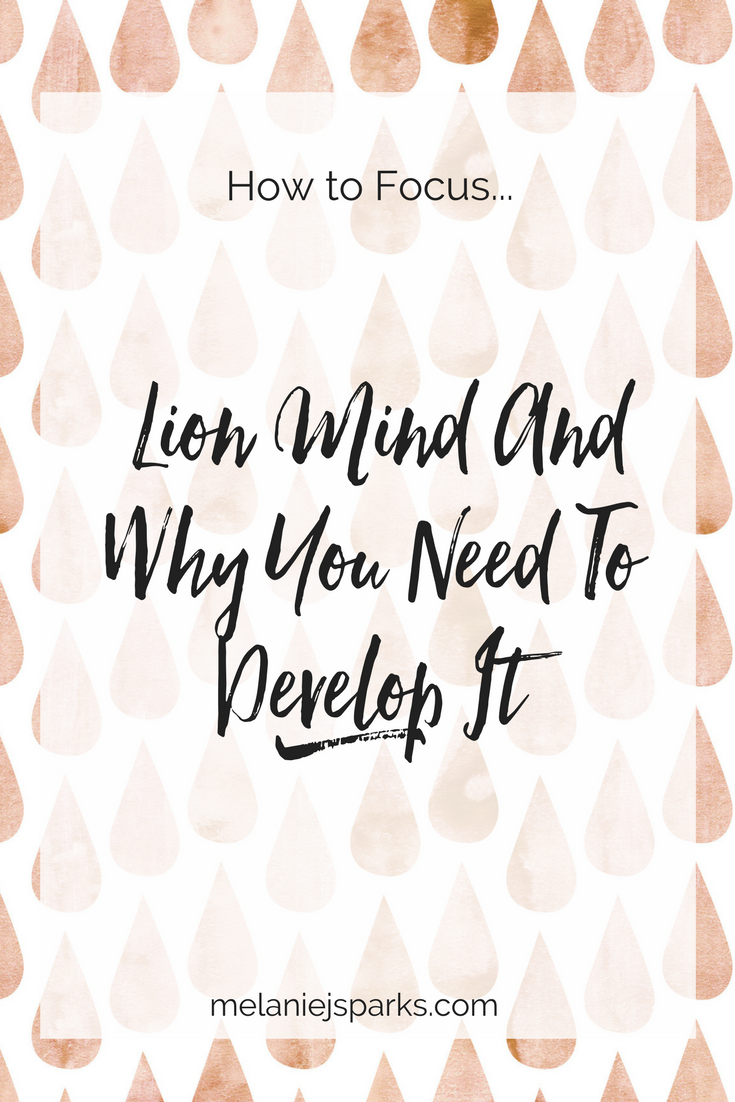 How to focus as a blogger or entrepreneur, how to set priorities, how to develop lion mind, how to avoid shiny objects