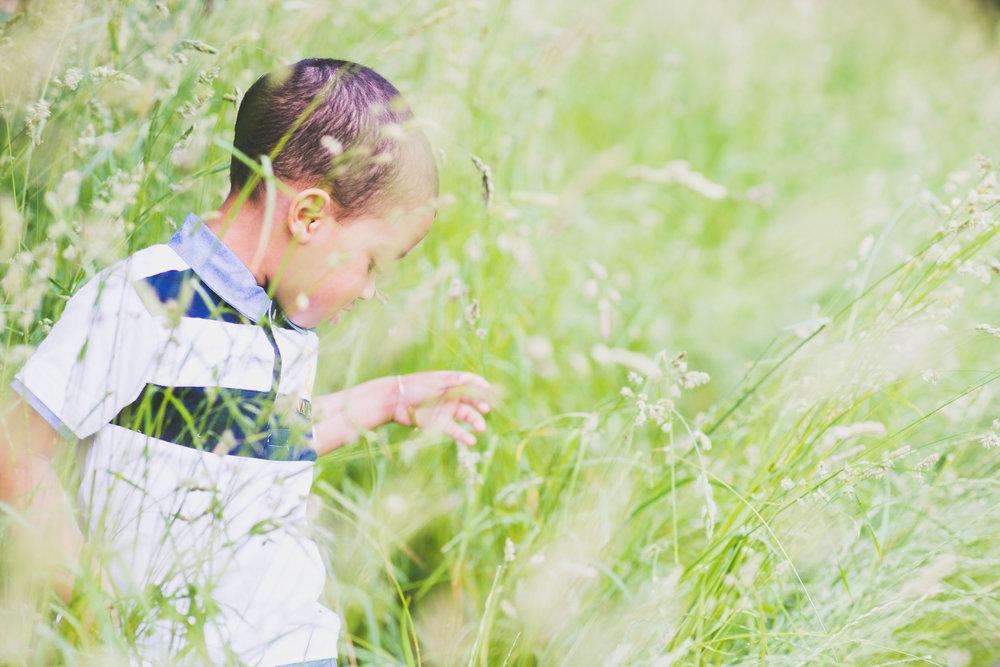 Boy in grass - Family - Photo credit Nicola Bailey.jpg