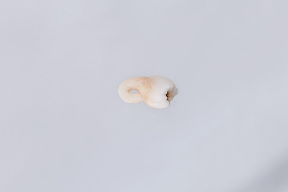 Augmented fragility , Rhizome, cast dental ceramic, 12x11x6mm, London 2014