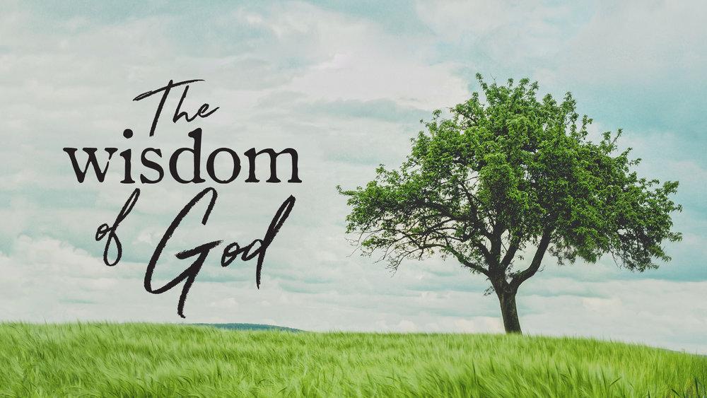 The Wisdom of God.jpg