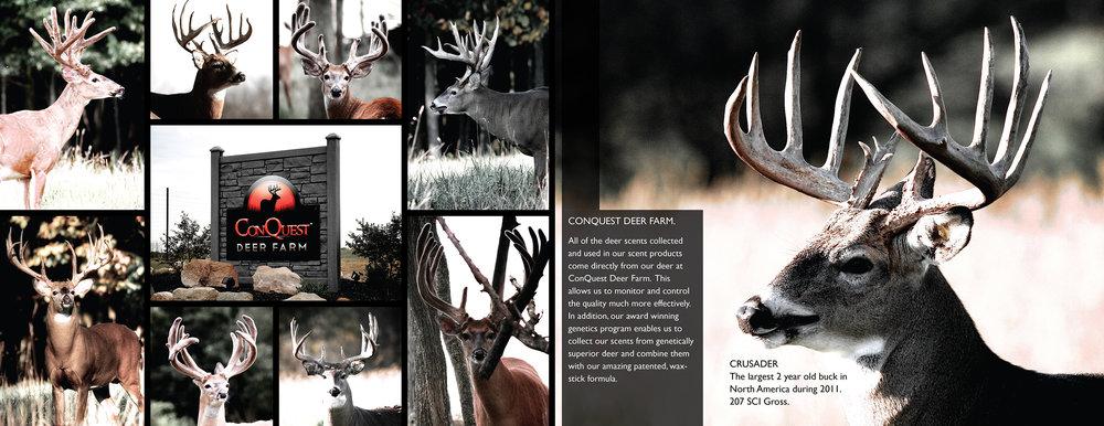 ConQuest Deer Farm.jpg
