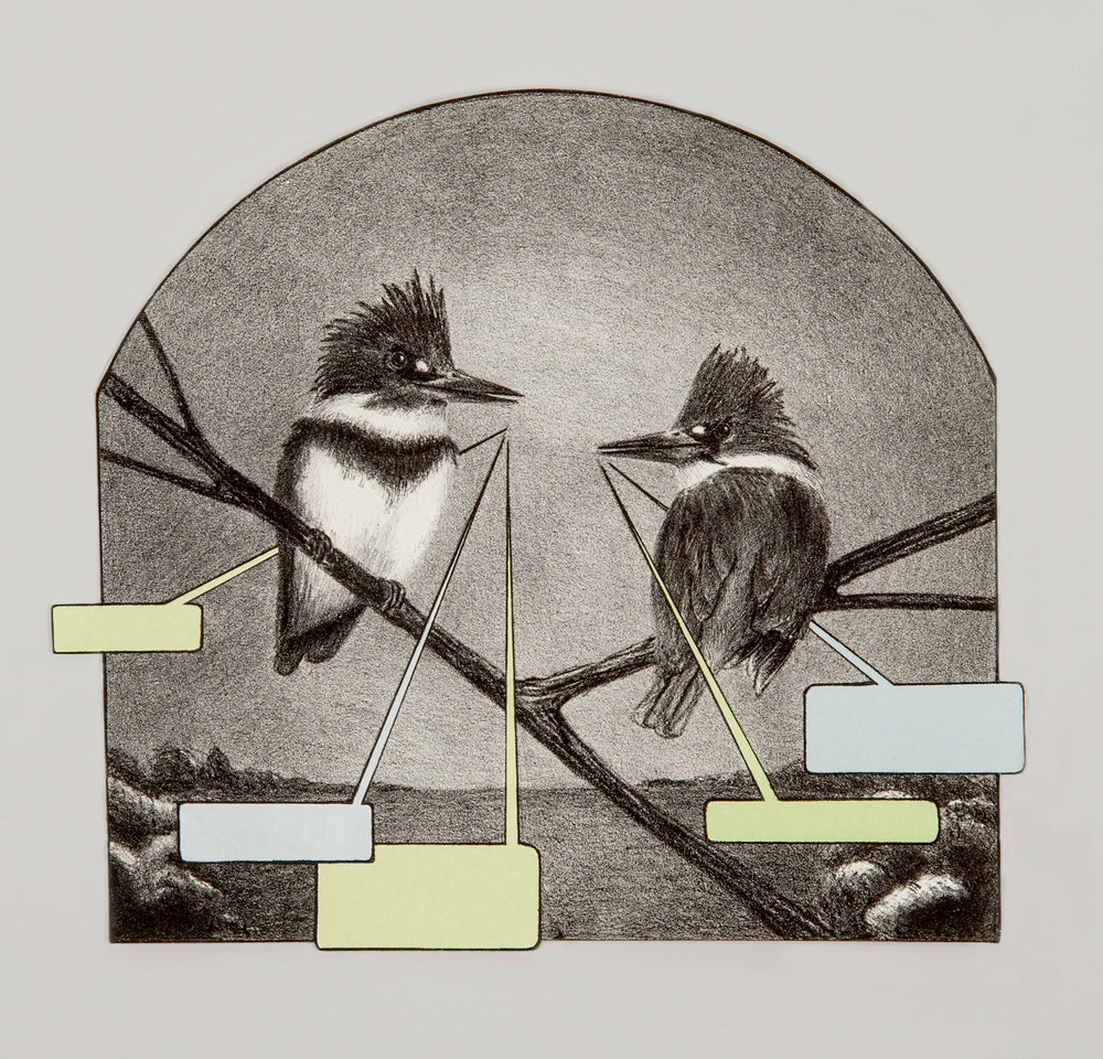 "Kingfishers, lithograph with Chine colle, 18"" x 20"", 2011"
