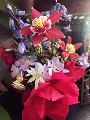 Here's a cheerful offering of little bouquet from my spring garden.