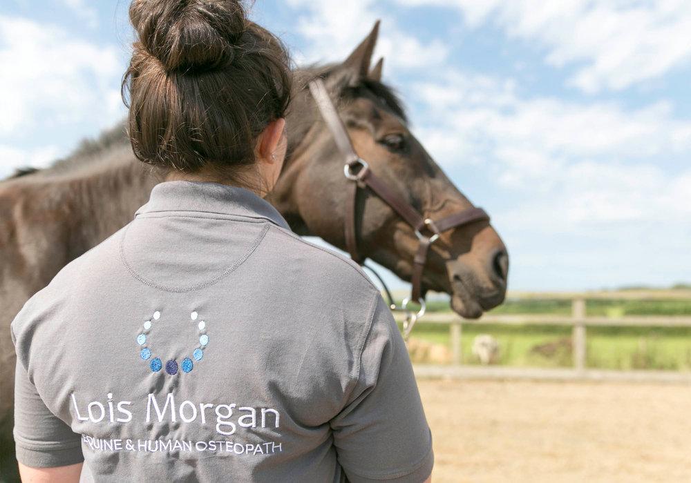 lois-morgan-equine-osteopath-Swansea-Gower.jpg