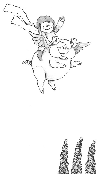 Oh Such Foolishness - If Pigs Could Fly.jpg