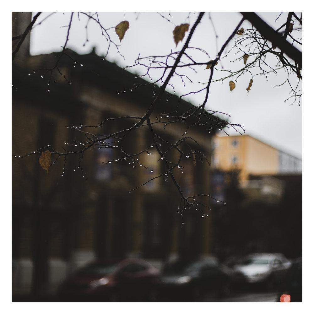 Water Drops W.jpg