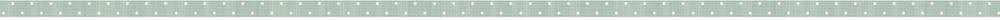 CE logo bande 2.png