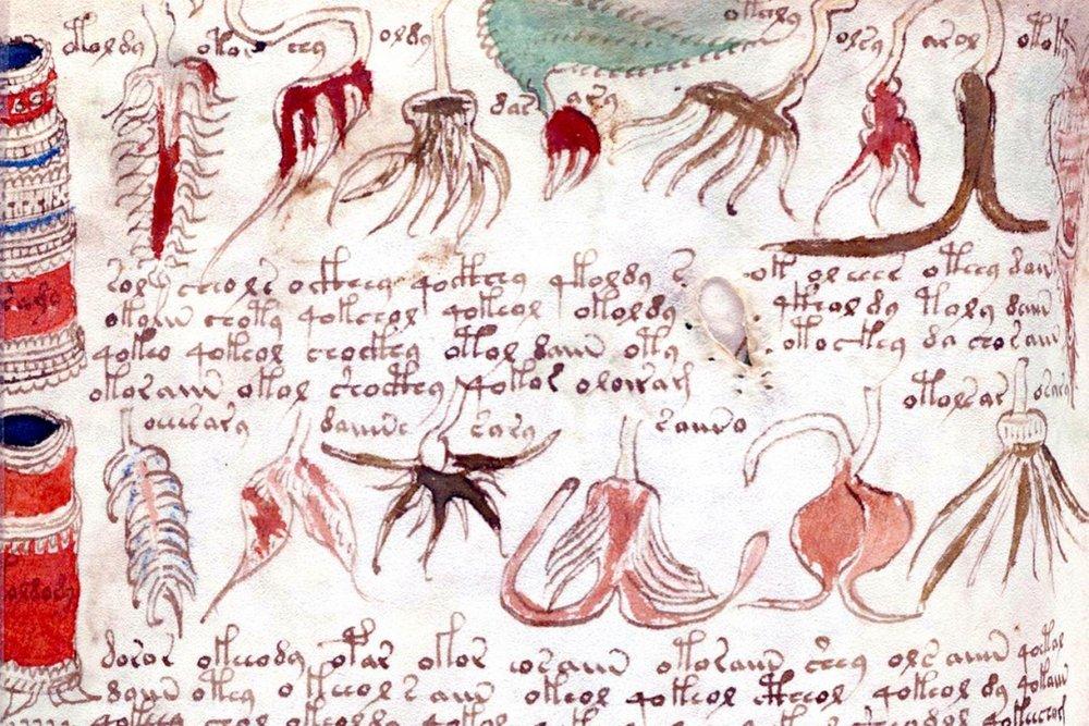voynich-manuscript-20150204_gaf_uw4_1078-b.jpg