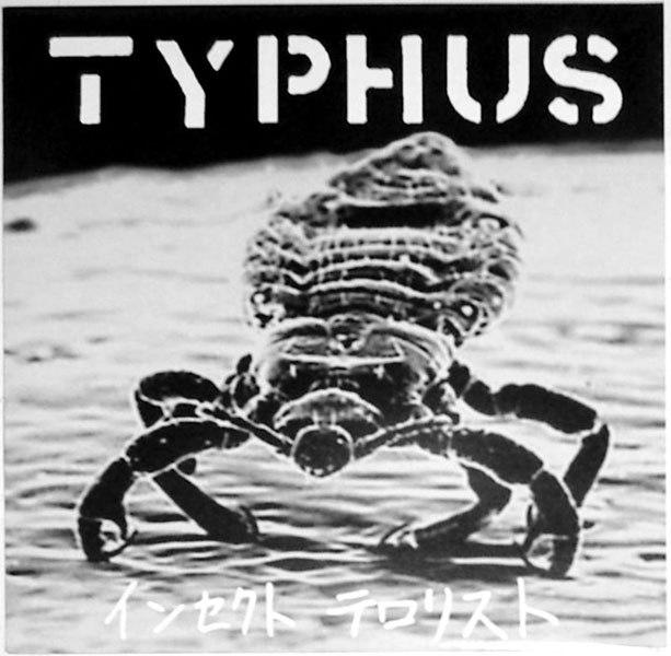 typhus.jpg