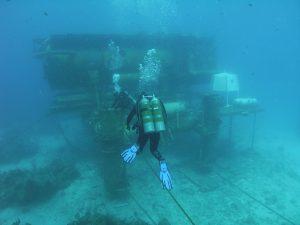 tpg-ootd-underwater-worlds-5-300x225.jpg